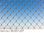 Купить «Fence rabitz closeup on blue sky background», фото № 30557237, снято 12 июля 2016 г. (c) Tryapitsyn Sergiy / Фотобанк Лори