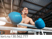 Купить «Boxer in blue gloves holds on the ropes.», фото № 30562777, снято 7 октября 2016 г. (c) Tryapitsyn Sergiy / Фотобанк Лори