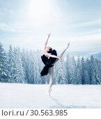 Graceful female ballet dancer stretching. Стоковое фото, фотограф Tryapitsyn Sergiy / Фотобанк Лори