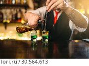 Barman making attractive alcoholic cocktail. Стоковое фото, фотограф Tryapitsyn Sergiy / Фотобанк Лори