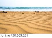 Купить «Sandy waves on Sri Lanka coast, selective focus», фото № 30565261, снято 21 февраля 2017 г. (c) Tryapitsyn Sergiy / Фотобанк Лори