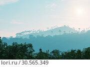 Купить «Mountains and trees silhouettes at sunset, Ceylon», фото № 30565349, снято 23 февраля 2017 г. (c) Tryapitsyn Sergiy / Фотобанк Лори