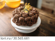 Купить «Fresh cake with chocolate biscuit cream closeup», фото № 30565681, снято 13 марта 2017 г. (c) Tryapitsyn Sergiy / Фотобанк Лори