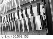 Kitchen knives on magnetic holder closeup. Стоковое фото, фотограф Tryapitsyn Sergiy / Фотобанк Лори