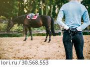 Купить «Female rider trains her horse, horseback riding», фото № 30568553, снято 17 сентября 2017 г. (c) Tryapitsyn Sergiy / Фотобанк Лори