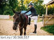 Female jockey and brown stallion, horseback riding. Стоковое фото, фотограф Tryapitsyn Sergiy / Фотобанк Лори