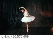 Graceful ballerina dancing on theatrical stage. Стоковое фото, фотограф Tryapitsyn Sergiy / Фотобанк Лори