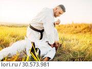Купить «Karate fighter deals decisive kick to the opponent», фото № 30573981, снято 26 августа 2018 г. (c) Tryapitsyn Sergiy / Фотобанк Лори