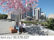Купить «Люди под цветущей сакурой на Тургеневской площади в Москве», эксклюзивное фото № 30578037, снято 2 июня 2018 г. (c) Дмитрий Неумоин / Фотобанк Лори