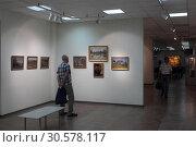 Купить «Балашихинская Картинная галерея. Выставка живописи», эксклюзивное фото № 30578117, снято 6 сентября 2018 г. (c) Дмитрий Неумоин / Фотобанк Лори