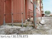Купить «Homeless sad cat on city street near house. Photo of homeless animal», фото № 30578873, снято 14 июля 2006 г. (c) Dmitry Domashenko / Фотобанк Лори