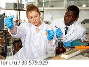 Купить «Focused woman lab technician checking for result of experiment», фото № 30579929, снято 21 марта 2019 г. (c) Яков Филимонов / Фотобанк Лори