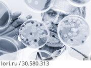 Купить «Senior life science researcher grafting bacteria.», фото № 30580313, снято 28 декабря 2012 г. (c) Matej Kastelic / Фотобанк Лори