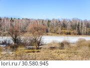 Купить «Долгий (Виноградовский) пруд в Москве весной», фото № 30580945, снято 2 апреля 2019 г. (c) Алёшина Оксана / Фотобанк Лори