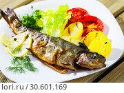 Купить «Picture of tasty baked whole trout with potatoes, greens and tomatoes», фото № 30601169, снято 17 июля 2019 г. (c) Яков Филимонов / Фотобанк Лори