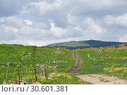 Купить «Golan Heights, Israel», фото № 30601381, снято 3 апреля 2019 г. (c) Знаменский Олег / Фотобанк Лори