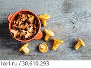 Купить «Roasted Golden Chanterelles», фото № 30610293, снято 3 августа 2013 г. (c) easy Fotostock / Фотобанк Лори