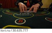 Купить «Casino stickman takes the cards», видеоролик № 30635777, снято 23 апреля 2019 г. (c) Jan Jack Russo Media / Фотобанк Лори