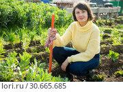 Купить «Young woman in a yellow sweater treats weeds in the garden», фото № 30665685, снято 23 июля 2019 г. (c) Яков Филимонов / Фотобанк Лори