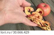 Купить «Мужская рука и сушеные яблоки», видеоролик № 30666429, снято 28 апреля 2019 г. (c) Александр Романов / Фотобанк Лори