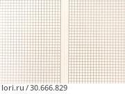 Купить «Sheet of engineering graph grid paper. Simple background texture for template, design or art.», фото № 30666829, снято 26 апреля 2019 г. (c) bashta / Фотобанк Лори