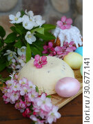 Still Life with Easter Cottage Cheese and Painted Eggs. Стоковое фото, фотограф Марина Володько / Фотобанк Лори