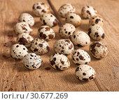 Купить «Quail eggs, close-up», фото № 30677269, снято 4 августа 2013 г. (c) Наталья Двухимённая / Фотобанк Лори