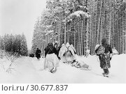 Купить «BELGIUM Herresbach -- 28 Jan 1945 -- American troops drag a heavily loaded ammunition sled through the snow, as they move for an attack on Herresbach,...», фото № 30677837, снято 23 мая 2012 г. (c) age Fotostock / Фотобанк Лори