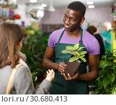 Owner of flower shop with female customer. Стоковое фото, фотограф Яков Филимонов / Фотобанк Лори