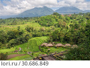 Купить «Rural landscape of the Bali island, farm and rice fields on background of mountains», фото № 30686849, снято 27 сентября 2010 г. (c) Юлия Бабкина / Фотобанк Лори