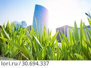 La Defense district towers at sunny day in Paris. Стоковое фото, фотограф Сергей Новиков / Фотобанк Лори