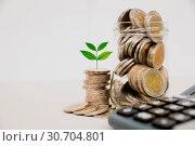 Купить «Stock financial indices with stack coin and calculator. Financia», фото № 30704801, снято 10 января 2018 г. (c) easy Fotostock / Фотобанк Лори