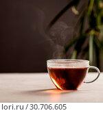 Купить «Tea composition», фото № 30706605, снято 23 января 2018 г. (c) easy Fotostock / Фотобанк Лори