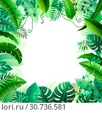 frame of different tropical leaves on white background. Стоковая иллюстрация, иллюстратор Татьяна Трощева / Фотобанк Лори