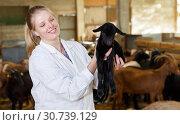 Купить «Female farmer caring about goatlings», фото № 30739129, снято 15 декабря 2018 г. (c) Яков Филимонов / Фотобанк Лори