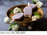 Homemade vanilla popsicle in chocolate glaze. Стоковое фото, фотограф Марина Сапрунова / Фотобанк Лори