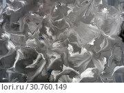 Abstract monochrome grunge texture. Gray decorative distress background. Template for design, art. Стоковое фото, фотограф bashta / Фотобанк Лори