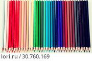 colored pencils lying in row. Стоковое фото, фотограф Татьяна Яцевич / Фотобанк Лори