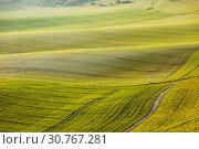 Купить «Sunrise in South Downs National Park in West Sussex, England.», фото № 30767281, снято 13 апреля 2019 г. (c) age Fotostock / Фотобанк Лори