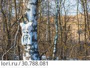 Купить «A white female mannequin nailed to a birch trunk», фото № 30788081, снято 9 апреля 2019 г. (c) Валерий Смирнов / Фотобанк Лори