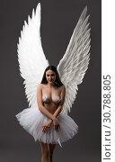 Купить «Brunette topless with gorgeous wings view», фото № 30788805, снято 29 апреля 2019 г. (c) Гурьянов Андрей / Фотобанк Лори