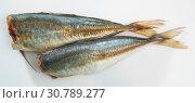 Купить «Atlantic horse mackerel on white surface», фото № 30789277, снято 19 июля 2019 г. (c) Яков Филимонов / Фотобанк Лори
