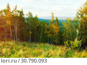 Купить «Forest landscape with mixed forest trees on the mountain slopes under soft sunset light», фото № 30790093, снято 23 августа 2013 г. (c) Зезелина Марина / Фотобанк Лори