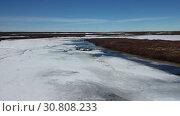 Купить «Весна в тундре на севере Западной Сибири», видеоролик № 30808233, снято 21 мая 2019 г. (c) Григорий Писоцкий / Фотобанк Лори