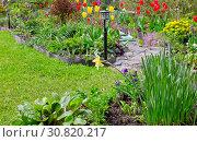 Купить «Дачный участок с большим количеством разнообразных весенних цветов», фото № 30820217, снято 26 мая 2019 г. (c) Людмила Капусткина / Фотобанк Лори