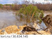 Купить «Spring flood on the river», фото № 30834145, снято 22 апреля 2018 г. (c) Акиньшин Владимир / Фотобанк Лори