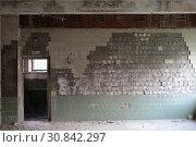 Купить «Балашиха, интерьер разрушенной бани на Флерова», эксклюзивное фото № 30842297, снято 29 мая 2019 г. (c) Дмитрий Неумоин / Фотобанк Лори