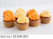 Купить «cupcakes with frosting on white background», фото № 30845801, снято 6 июля 2018 г. (c) Syda Productions / Фотобанк Лори
