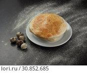 Купить «Chicken Pot Pie with Mushrooms and Quail Eggs», фото № 30852685, снято 8 мая 2019 г. (c) Алексей Кокорин / Фотобанк Лори