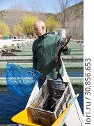 Купить «Farmer catching sturgeon with landing net», фото № 30856653, снято 18 октября 2019 г. (c) Яков Филимонов / Фотобанк Лори